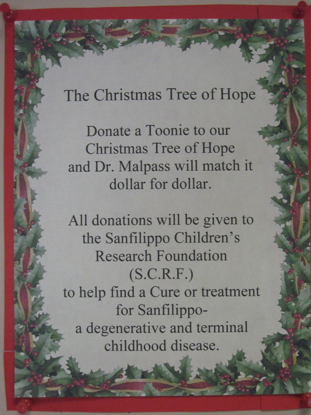 Please donate to our Christmas Tree of Hope | Dr Sandra Malpass ...